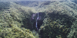 Black River gorges and nature reserves in Mauritius