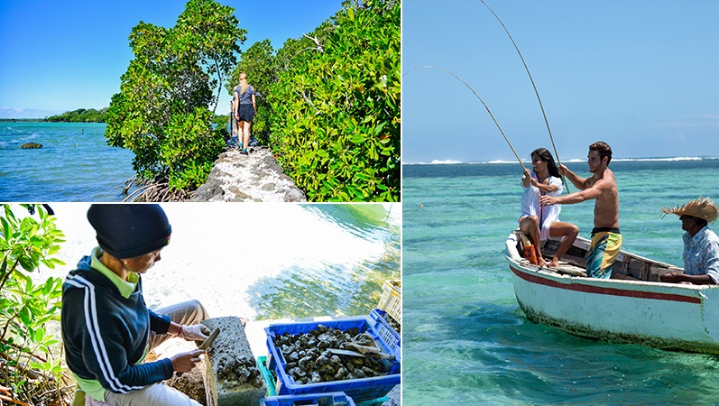 Fishing trip and discovery of oyster farming in Mauritius